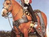 Back in the saddleagain